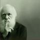 36 - Darwin y la evolución
