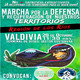 Panguipulli 2: Invitan este 28/O a Marcha en Valdivia por la Defensa y Recuperación de los Territorios