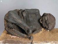 Misterios enterrados: Sacrificio mortal · En busca de cámaras secretas