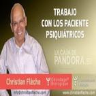 Trabajo con los Paciente Psiquiátricos por Christian Flèche - Biodescodificación