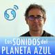 Los Sonidos del Planeta Azul 2503 - Entrevista a SINOUJ · Pablo Hernández 'Labu' (18/01/2018)