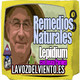 Preparación del Lepidium latifolium el remedio natural contra los calculos renales con Josep Pamies