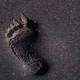 Las mejores historias de terror : PISADAS - Harlan Ellison | [5-]