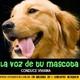 La voz de tu mascota edicion nº 86