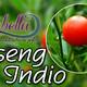 Nutribella - GINSENG INDIO