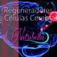 Nutribella - REGENADORES DE CÉLULAS CEREBRALES