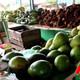 Abastece cooperativa habanera a los mercados integrales de la ciudad