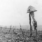 La verdadera causa de la Primera Guerra Mundial