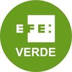 Efe Radio - Mangas Verdes