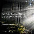 Meditaciones - Fr. Miguel Ángel de la Eucaristía,