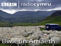 Cadarnhau egwyddorion polisi amaeth Llywodraeth Cymru