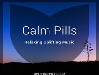 Calm Pill 1 Still Habitat