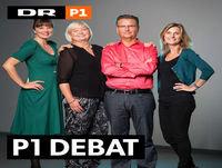 P1 Debat: Kan man blive dansker, hvis man lyver? 2017-08-23