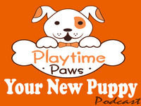 YNP#012: The Most Important Part of Your Dog's Obedience Training