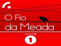 Duas desgraças vistas de longe na crónica de Rui Cardoso Martins