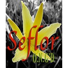Seflor - Conferencias y Meditaciones