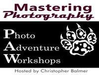 Mastering Photography - Birds In Flight Part 1