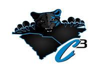 Carolina Panthers Training Camp Primer (C3 Carolina Panthers Podcast Ep. 17.25)