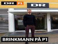 Brinkmann på P1: Nanoteknologi 2017-05-24