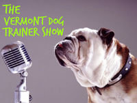 Ep 0047: Thanksgiving: Talking Dogs Radio Show