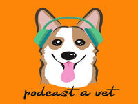 017: How To Thrive As A Veterinarian When Life Serves You Lemons w/ Jeanne Ficociello