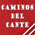 Aula de Flamenco.-