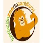 Podcast Zoo de Santillana