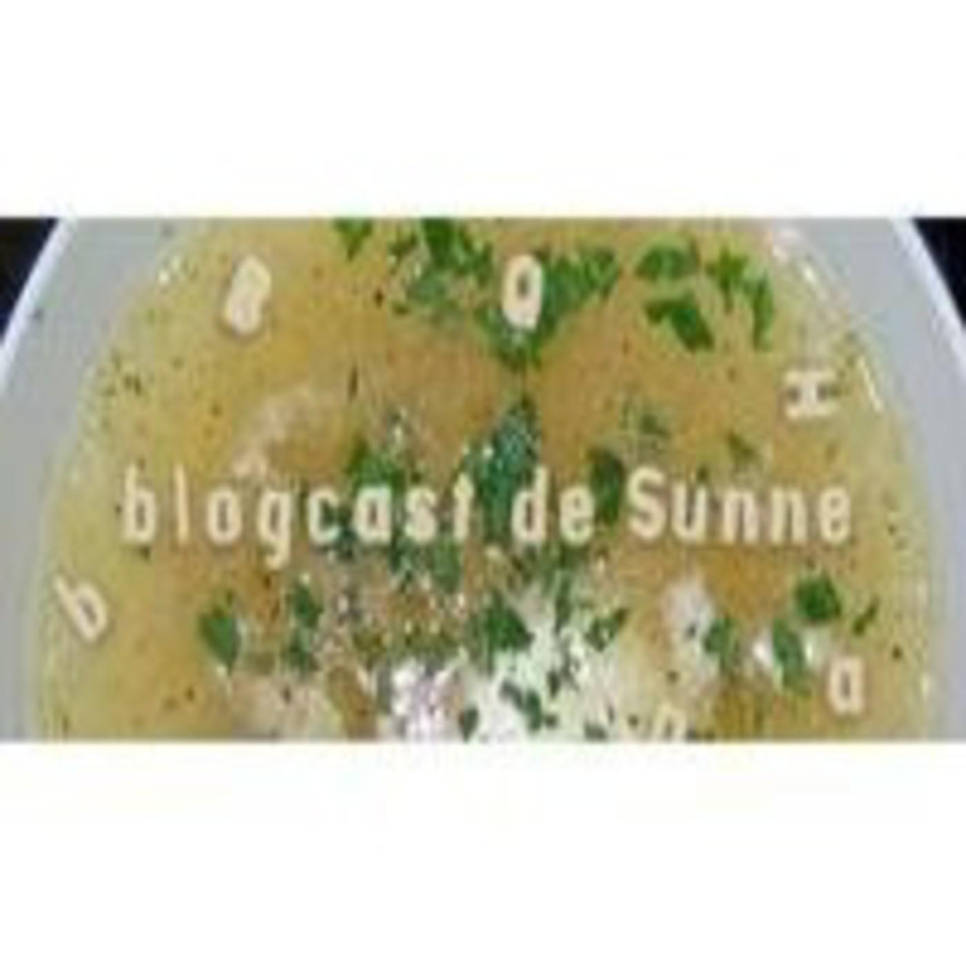 <![CDATA[Sunne blogcast]]>