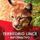 Territorio lince 2º parte 24-02-2016