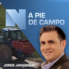 A pie de Campo