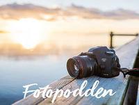 4. Natalie Greppi - Om konsertfoto och att bli fotograf på heltid
