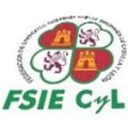 FSIE CyL