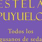 Todos los gusanos de seda de Estela Puyuelo