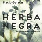 Històries 912 - Ricard Ruiz Garzón