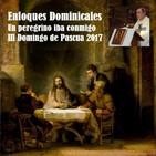 III Domingo de Pascua 2017. Un peregrino iba conmigo (Lucas 24,13-35)