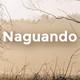 Naguando 26 de xunu de 2017 (1)