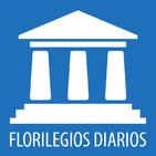 FT - Antropología del Derecho (3ªparte)