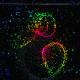 La Brújula de la Ciencia s05e06: Nobel de Física 2015 para las oscilaciones de neutrinos