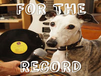 """For the Record #57: Landlady's """"The World is a Loud Place"""""""