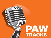 PAW Tracks: Someone to Lean On (Aida Pacheco '77)