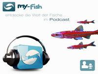 Podcast Episode #122: Aquarianer auf Youtube (Tobias Gawrisch)