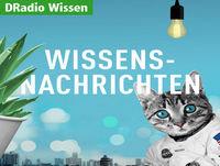 Wissensnachrichten Podcast vom 20.11.2017